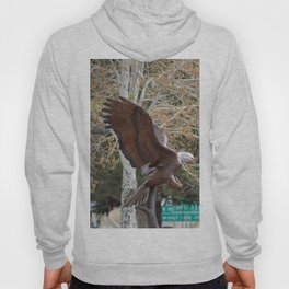 American Eagle and Birch Tree Hoody