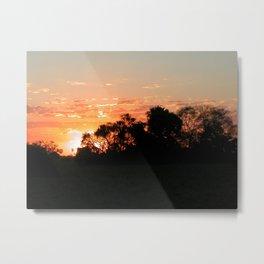 Sunset Tropical Forest Trees Landscape 3, Pantanal, Brazil Metal Print