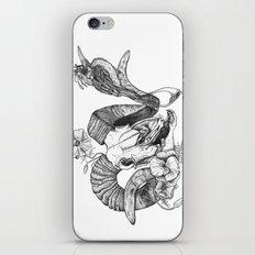 The ramskull and bird iPhone & iPod Skin