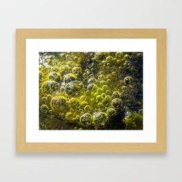 Limo Framed Art Print