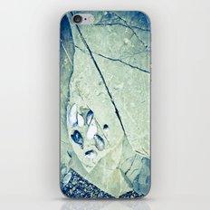 Hidden Treasures iPhone & iPod Skin