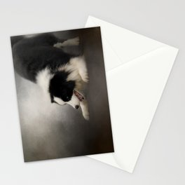 Ready to Play - Border Collie Stationery Cards