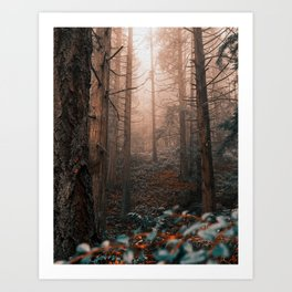 Surroundings || Ethereal Forest Art Print