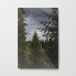 Lava Canyon Forest Metal Print