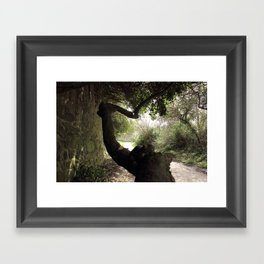 The strange trees Framed Art Print