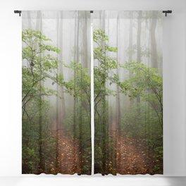 Adventure Ahead - Foggy Forest Digital Nature Photography Blackout Curtain