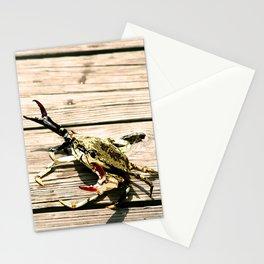 CrabWalk Stationery Cards