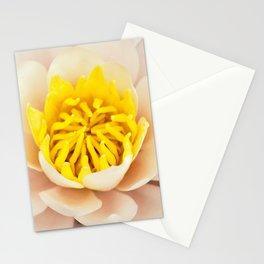 Palest pink lily Stationery Cards