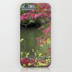 Red Summer iPhone 6s Slim Case