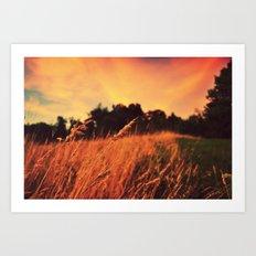 Sunset Pastures Art Print
