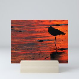 Sunset Beach Nap Mini Art Print