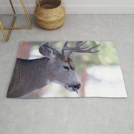 Watercolor Deer, Mule 06, RMNP, Nasty Bites Rug