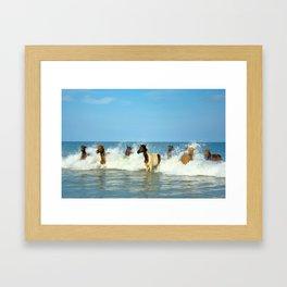 Wild Horses Swimming in Ocean Framed Art Print