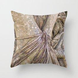 Strangler fig close up view Throw Pillow