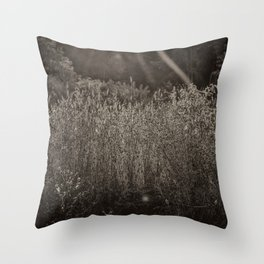 Vintage Morning Field Light Throw Pillow