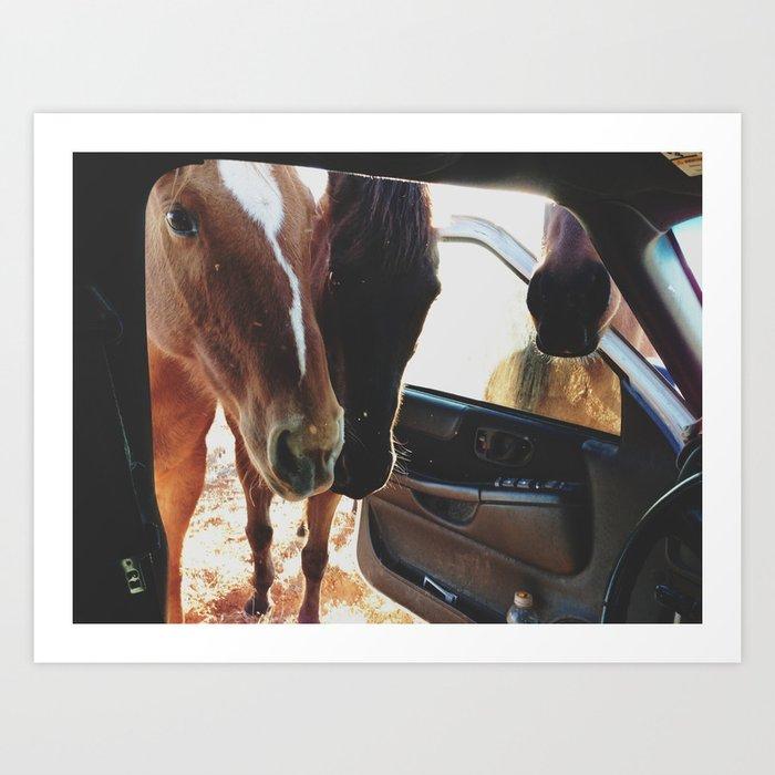 Car Horses Art Print