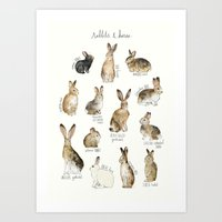 rabbits Art Prints featuring Rabbits & Hares by Amy Hamilton