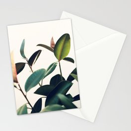 Ficus Elastica #8 Stationery Cards