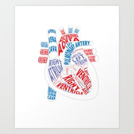 Parts of heart product Anatomical heart Gift for cardiologist Art Print