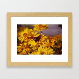 ButterFlower Framed Art Print