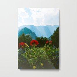Leavenworth Vista Metal Print