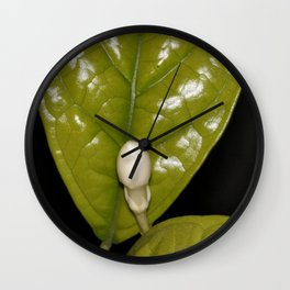 Jasmine Flower Fragrance Wall Clock