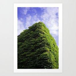 Amazing Green Vines Blanket a Building in Port Hope Art Print