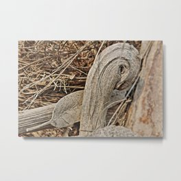Still life in palm bark Metal Print
