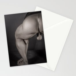 Male 3815 Stationery Cards