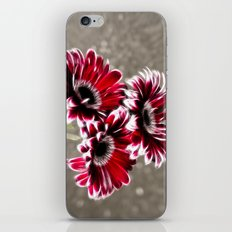Triple Gerbera Fractalius iPhone & iPod Skin