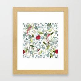 Eucalyptus Kangaroo paw watercolor floral design Framed Art Print