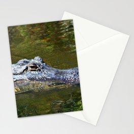 Wild Gator Stationery Cards