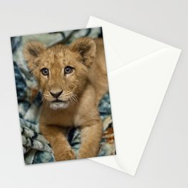 Lambert the Lion and His Blanket Stationery Cards