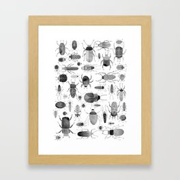 Ink Beetles Framed Art Print
