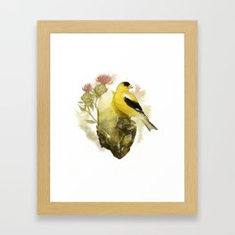 Goldfinch Bird and Anglesite Crystals Framed Art Print