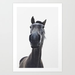Simply horse Art Print