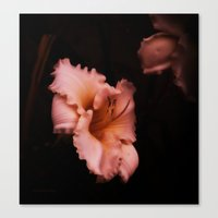 lily Canvas Prints featuring Lily by Christine Belanger