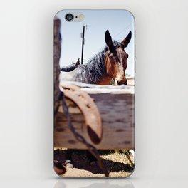 Horsehoe Blur iPhone Skin