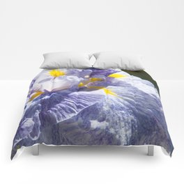 The love of the Iris by Teresa Thompson Comforters
