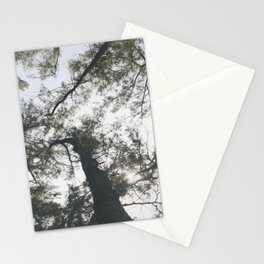 Above Stationery Cards