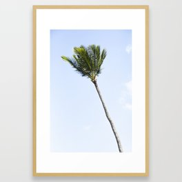 Palm tree party of one Framed Art Print