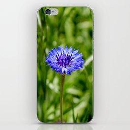Blue Cornflower iPhone Skin