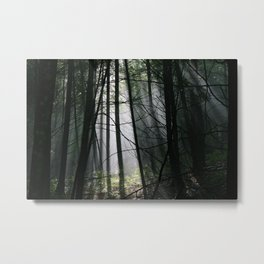 Encounters of the Vermont Kind Metal Print