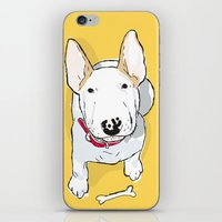 bull terrier iPhone & iPod Skins featuring bull terrier by bbay