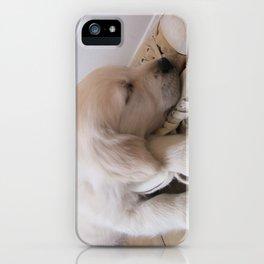 Puppy Sleeping on Converse iPhone Case