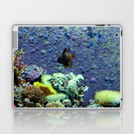 Beautifully Ugly Brown Fish Laptop & iPad Skin