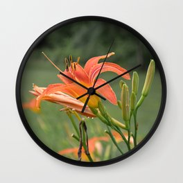 lily bloom and 9 buds Wall Clock