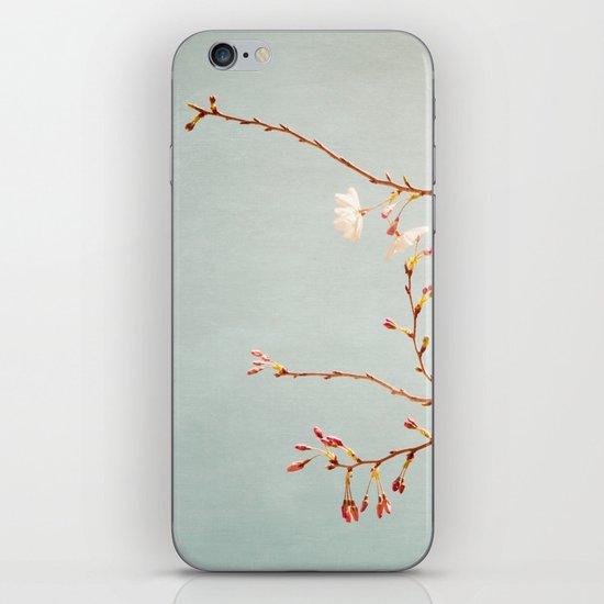 Painted Sky iPhone & iPod Skin