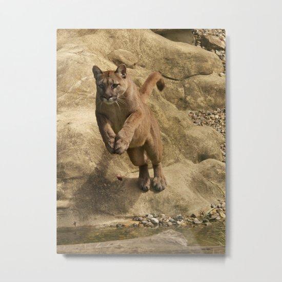 Puma Jumping Metal Print