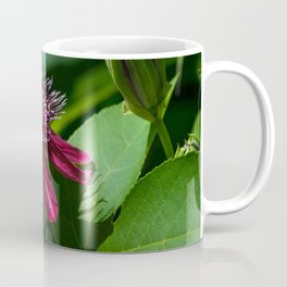 A Surprise Visitor Coffee Mug